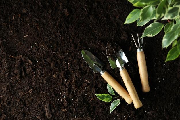 토양 배경에 원예의 개념, 텍스트를위한 공간