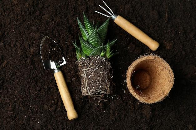 토양 배경에 원예의 개념