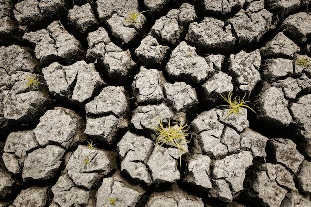 지구 온난화의 개념