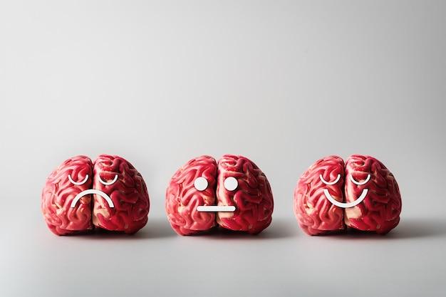 メンタルヘルスと心理的健康の概念。灰色の背景にさまざまな感情を持つ人間の脳。