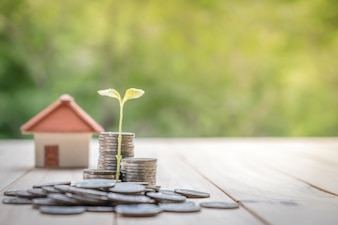 Concept of saving money for a house.Business Finance and Money concept,Save money for prepare in the future