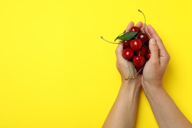 빨간 체리와 달콤한 베리의 개념