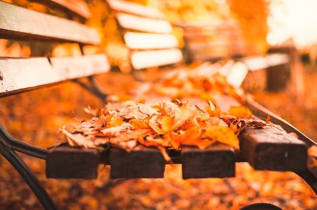秋の公園の空のベンチには、赤と黄色の乾燥した葉が散らばっています。黄金の秋のクローズアップconcept.relaxing場所の反射と熟考。
