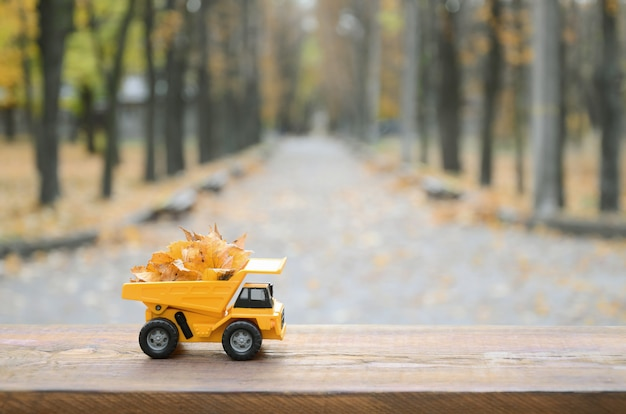 The concept of seasonal harvesting of autumn fallen leaves