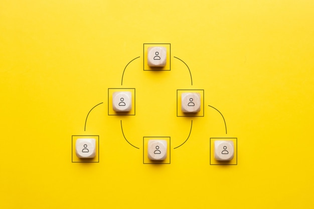 The concept of vertical management or chain of command in the company business.