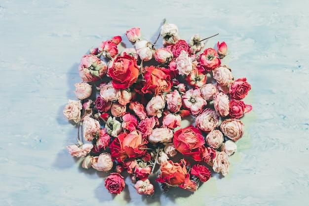 Концептуальный настоящий цветок. сортированный коллаж круга розы на синей текстуре предпосылки.