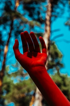 Conceptual photo, elegant female hand in red light. background of forest