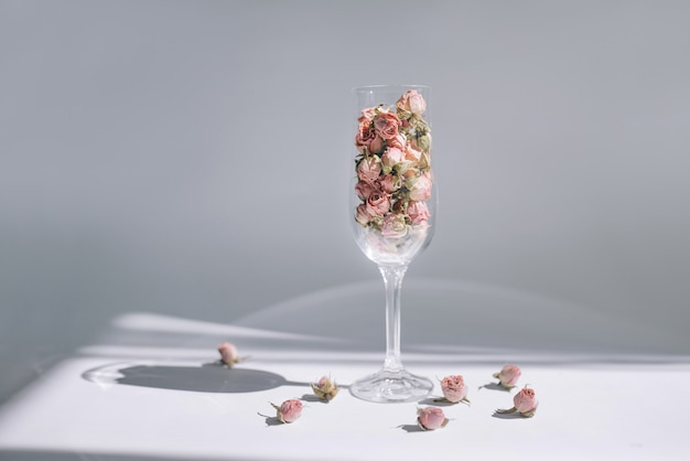 Концептуальное фото розы в бокале для вина на белом