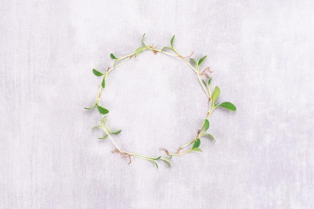 시계의 형태로 흰색 배경에 물냉이의 microgreens의 개념적 사진. 텍스트에 대 한 장소를 가진 마이크로 그린 원입니다. 채식주의 및 건강 식품 개념입니다.