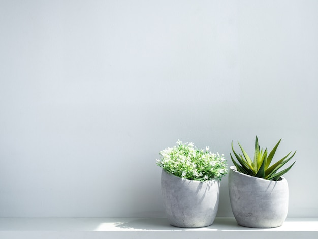 Concrete pots. modern geometric cement planters with white flowers and green succulent plant on white wood