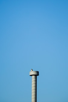 Concrete tower with bird