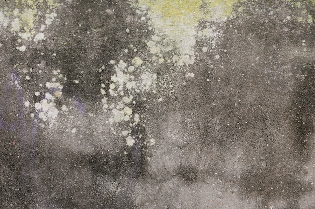 Concrete wall with moss and stains