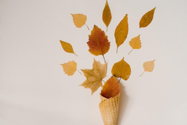 乾燥した黄色と赤の葉とワッフルアイスクリームのコーン