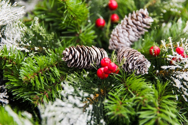 Cones on green branches of christmas tree. new year decorations