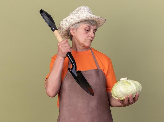 Fiducioso giardiniere donna anziana che indossa cappello da giardinaggio che tiene in mano una vanga e guarda il cavolo isolato su una parete verde oliva con spazio di copia