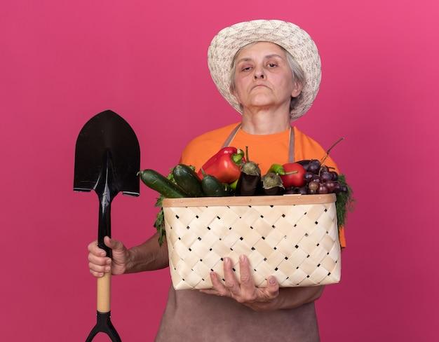 スペードと野菜のバスケットを保持しているガーデニング帽子をかぶって自信を持って年配の女性の庭師