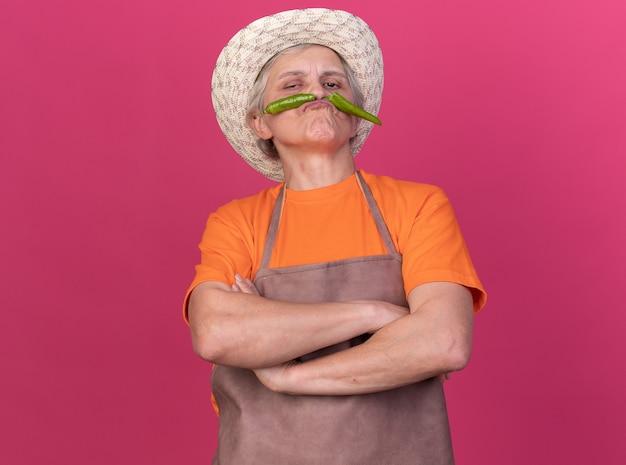 Уверенная пожилая женщина-садовник в садовой шляпе стоит со скрещенными руками, держа сломанный острый перец на губах, изолированном на розовой стене с копией пространства