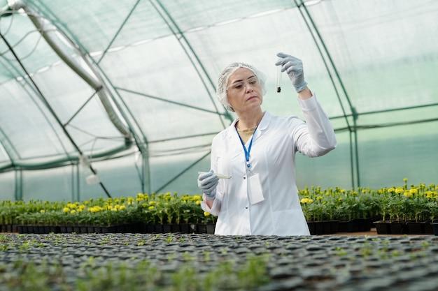토양 샘플이 있는 플라스크를 보고 있는 자신감 있는 여성 과학자