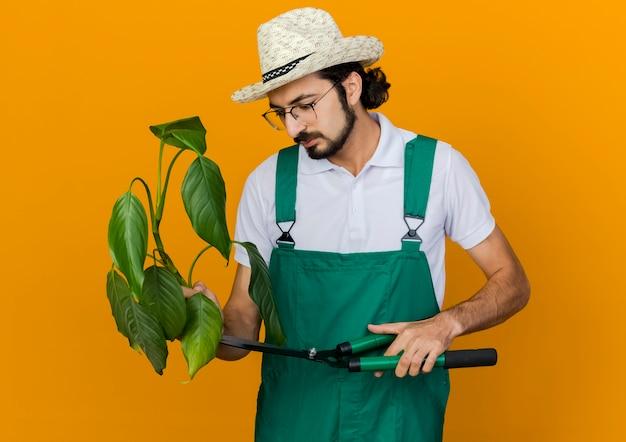 ガーデニング帽子をかぶって光学メガネで自信を持って男性の庭師はクリッパーを保持し、植物を見て