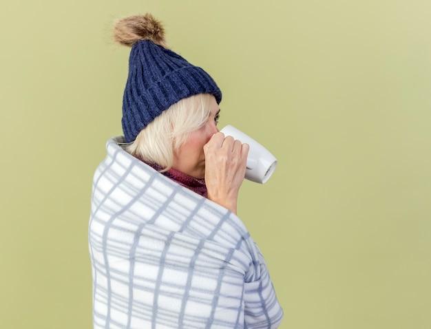 Fiduciosa giovane donna bionda malata che indossa cappello invernale e sciarpa avvolta in un plaid sta bevendo lateralmente dalla tazza isolata sulla parete verde oliva