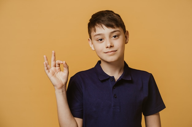 Confident young boy with brown eyes dressed in a dark blue t-shirt, shows ok gesture, being in a good mood, makes best choice. health, education and people concept.