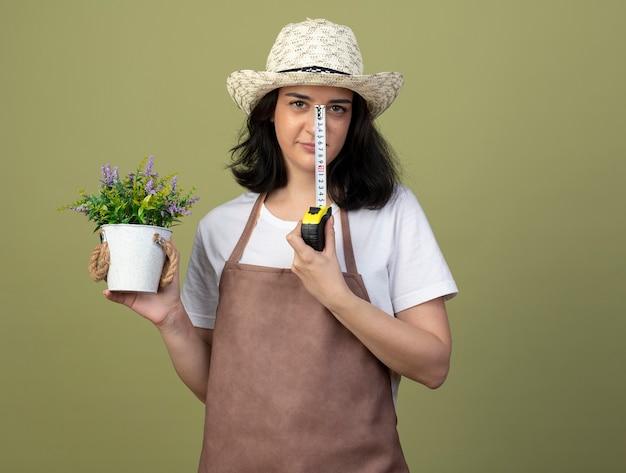 Il giovane giardiniere femminile castana sicuro in cappello da giardinaggio d'uso uniforme tiene il vaso di fiori e la misura di nastro isolata sulla parete verde oliva