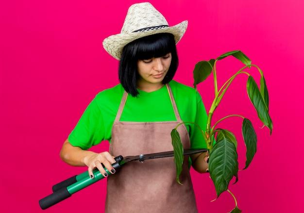 원예 모자를 쓰고 제복을 입은 자신감이 젊은 여성 정원사는 가위를 보유하고 식물을 바라본다.
