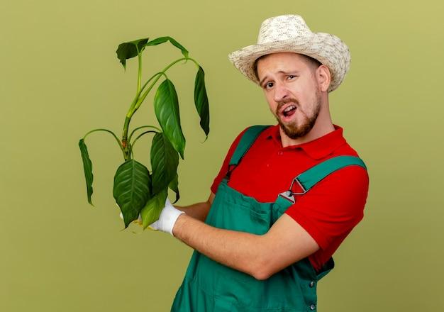 自信を持って若いハンサムなスラブの庭師の制服と帽子保持植物がオリーブグリーンの壁に隔離