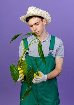 ガーデニングの帽子と手袋を身に着けている自信を持って若い男性の庭師は植物を保持します