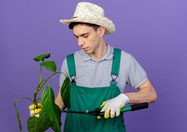 Fiducioso giovane giardiniere maschio indossando guanti e cappello da giardinaggio taglia la pianta con le forbici