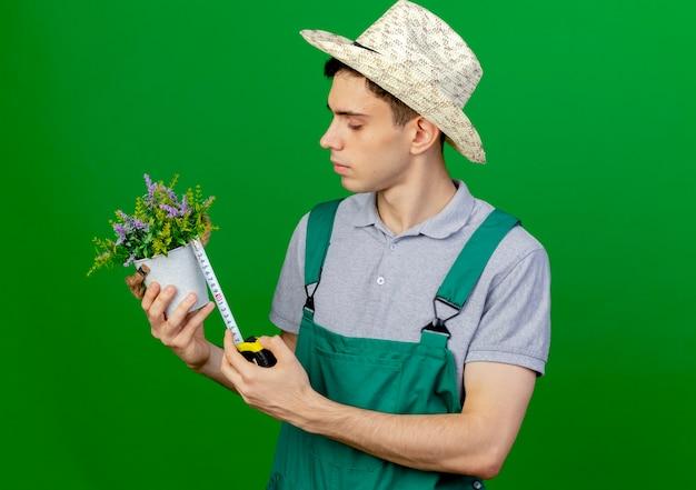 ガーデニング帽子をかぶって自信を持って若い男性の庭師は、コピースペースで緑の背景に分離された巻尺で植木鉢を測定します