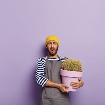 Confused housekeeper takes care of potted plant, holds big cactus in purple container