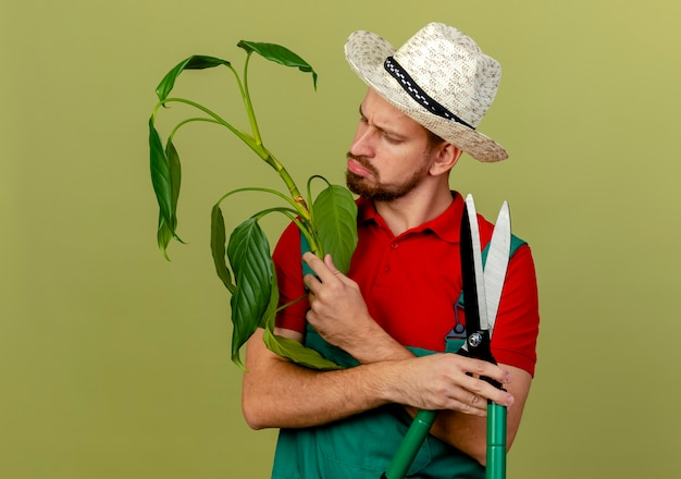 Confused young handsome slavic gardener in uniform and hat holding plant and pruners looking at plant isolated on olive green wall