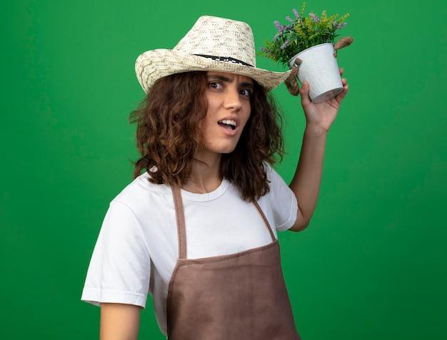 Giardiniere confuso della giovane donna in uniforme che porta il cappello di giardinaggio che tiene fuori il fiore in vaso di fiori sul retro isolato su verde