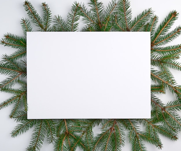 Congratulatory christmas surface with an empty white sheet and green branches