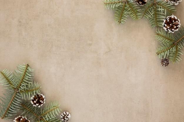Coni di conifere e foglie vista dall'alto