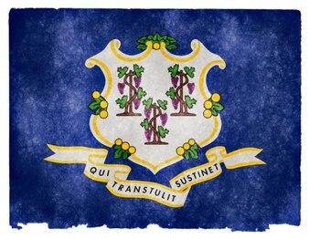 Connecticut grunge flag