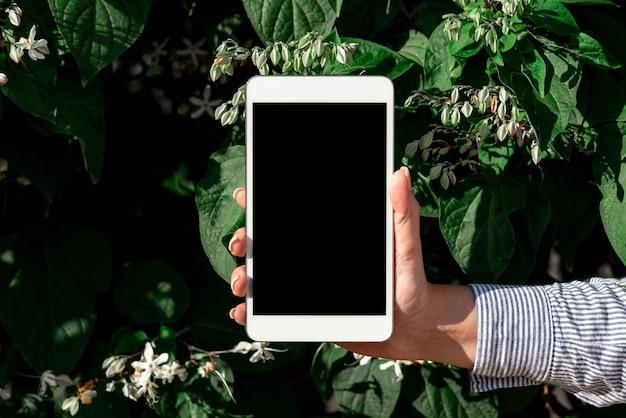 Объединение людей, голосовая видеосвязь, коммуникационное оборудование, устройство для поиска и устранения неисправностей