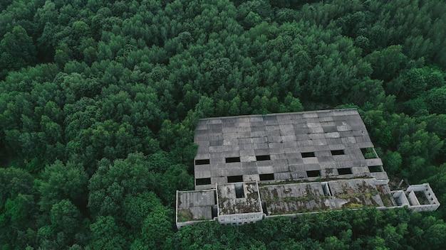 Строительство между деревьями