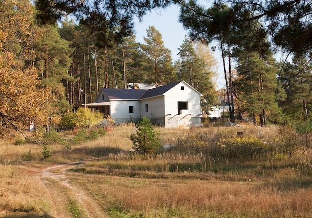 침엽수 림에 벽돌 오두막 건설
