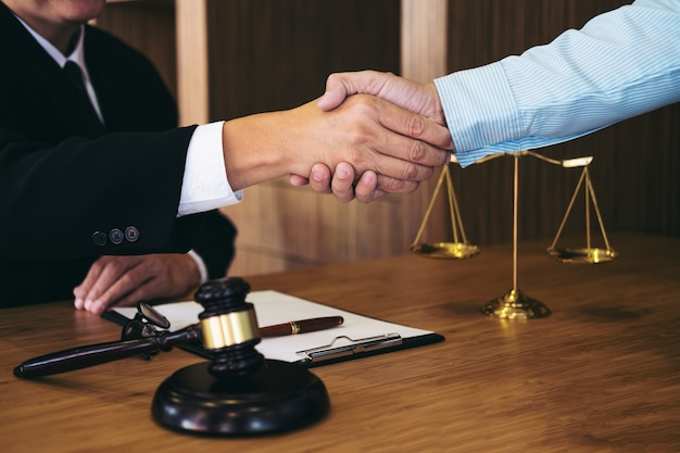 Consultation between a male lawyer and businessman