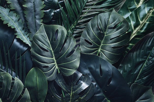 熱帯の葉や植物と現代的な現代の熱帯雨林の魔法とパターン。夏のジャングル。