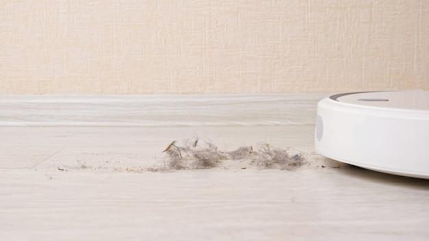 현대 로봇 진공 청소기 후버는 먼지, 모피, 양모 및 흙으로 된 나무 바닥이 밝은 방의 극도로 가까운 전망에서 베이지색 벽을 지나 이동합니다.