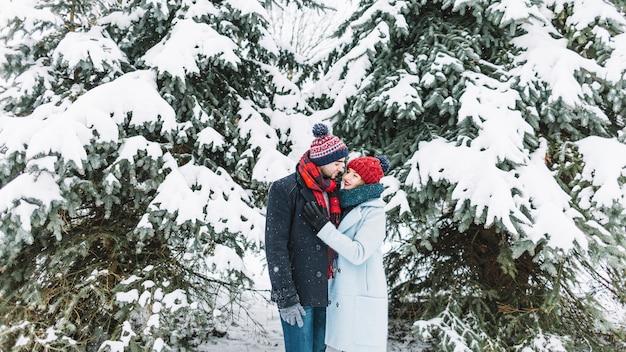 Содержание пара в снежных лесах поцелуи