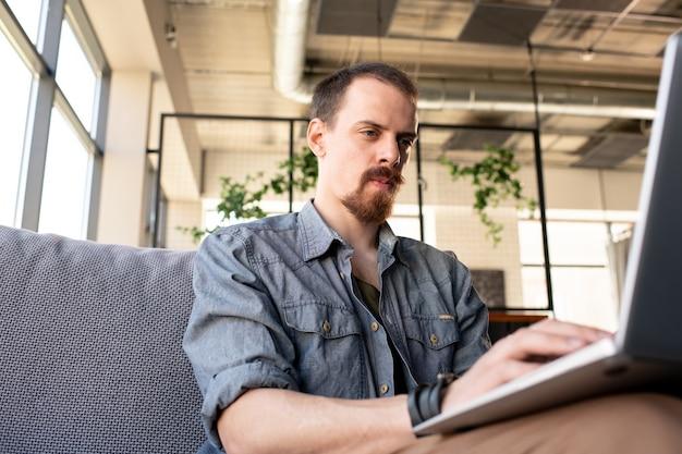 居心地の良いカフェに座って、ソーシャルメディアで対話しながらラップトップを使用して、ウェブサイトとデートしている巻き毛のかわいい女の子のコンテンツ