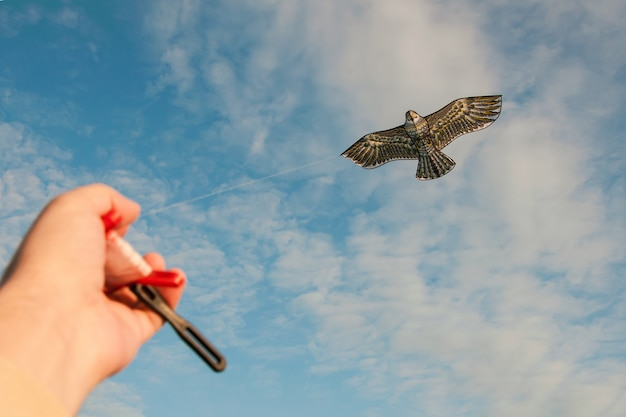 Control of a kite in the form of a bird