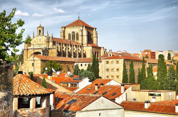 스페인 살라망카에 있는 성 스테판 수녀원. 필터링된 이미지