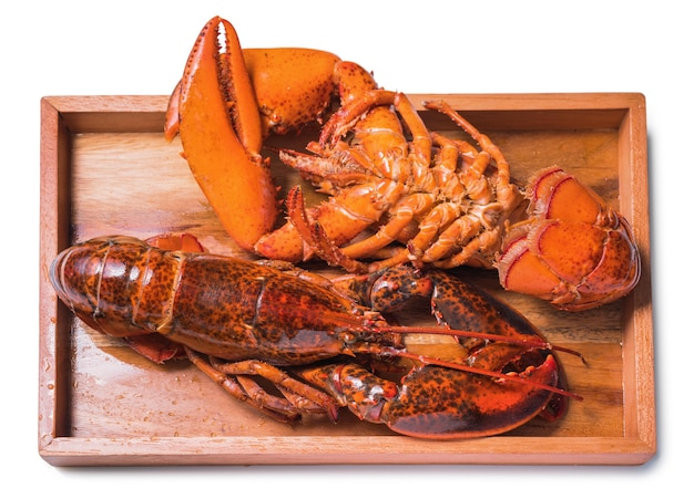 Cooked and boiled red lobster isolated on a white background.