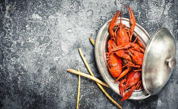 Cooked crawfish in a steel bowl. on a rustic background.