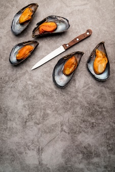 Cooked mediterranean mussels with copy space